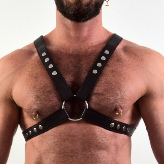 Harness + Brazaletes
